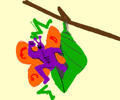 a butterfly coming out of the cocoon drawing by saw