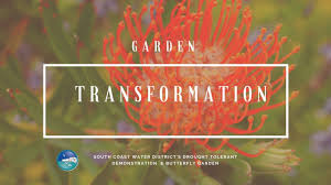 gardening with natives surfrider foundation water wise butterfly garden transformation youtube