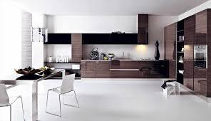 2014 Kitchen Design Ideas Best Modern Kitchen Design 2014 Caruba Info