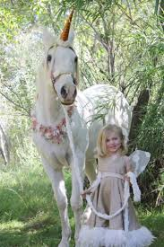 best 25 costumes for horses ideas on pinterest horse costumes