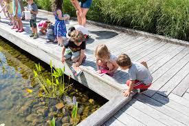 summer camp recap backyard art phipps conservatory and