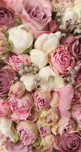 Shabby Flowers 86 Best Florales Fondos Images On Pinterest Flowers Wallpapers