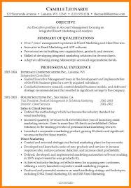 10 professional summary resume examples letter of apeal