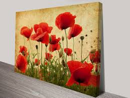 poppies flowers canvas prints of poppies flower canvas wall print melbourne