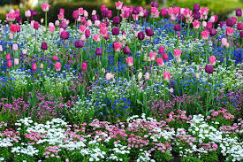 the most beautiful gardens in the world u2013 butchart gardens in