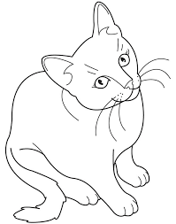 lofty ideas cat coloring book pages coloring books cat