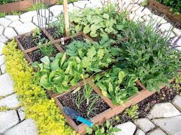 gardening just add water winnipeg free press homes