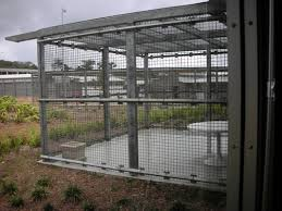 2011 Immigration Detention At Curtin Australian Human Rights Nightmare On Island Serco S Australian Detention Center