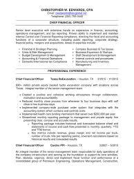 Petroleum Engineering Resume Download Innovative Cfo Vp Finance Controller In Houston Tx Resume