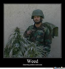 Weed Meme - weed soldier by loupland meme center