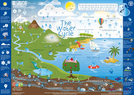 follow a water drop through the water cycle usgs water cycle
