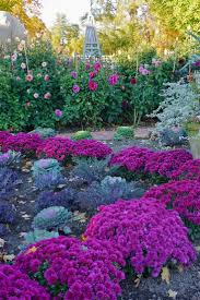169 best gardening images on pinterest gardens plants and