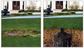 Water Drainage Problems In Backyard Drainage Long Island Landscaping