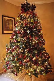 most pinteresting trees on tree