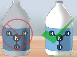 Ammonia Smell In Bathroom 5 Ways To Remove Bathroom Mold Wikihow