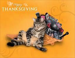 wishing you a beautiful thanksgiving makeup and