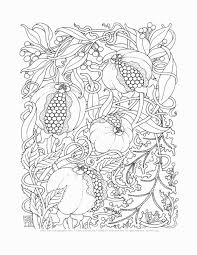 pages to color for adults chuckbutt com