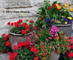 spring color and edibles at san antonio botanical garden