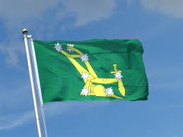disunity of the 1916 flags the irish tricolour and the starry