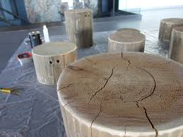 How To Build A Stump by Fraser River Discovery Centre The Goings On In A Pretty Cool
