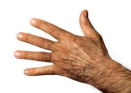 google images hands human hand worldwhiteweb pinterest change google and searching