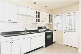 kitchen houzz kitchen cabinets design ideas gallery and interior
