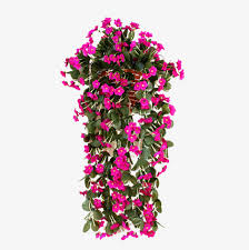 hanging flowers hanging flower png images vectors and psd files free