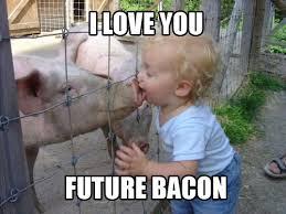 Bacon Memes - i love you future bacon memes and comics