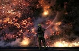 Wildfire Carson Wa by Yosemite Wildfire The Atlantic