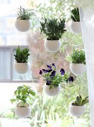 window herb harden how to start a school garden indoor window garden herbs garden