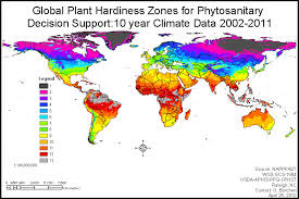 global zone map calendula gardening tips and uses enjoy simple pleasures