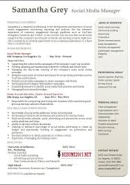 examples of outstanding resumes executive resumes examples sales
