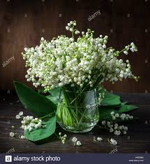 of the valley bouquet of the valley bouquet on the wooden table stock photo