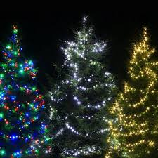 where to buy christmas tree lights christmas lights led outdoor outdoor fairy lights xmasdirect