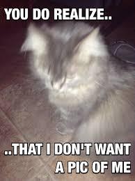 Tina Meme - tina meme by 1nvader m1l4 on deviantart
