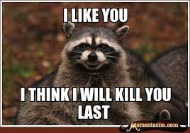 Raccoon Excellent Meme - evil plotting raccoon laugh a little pinterest raccoons