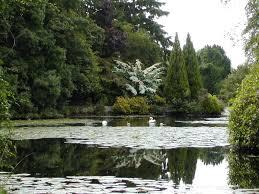 altamont gardens gardens of ireland