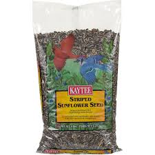kaytee striped sunflower seed petco