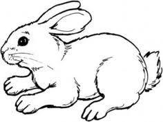 kitten coloring pages to print kaninchen zum ausmalen kinderzimmer pinterest journaling and