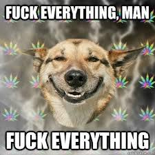 Fuck Everything Meme - fuck everything man fuck everything stoner dog quickmeme