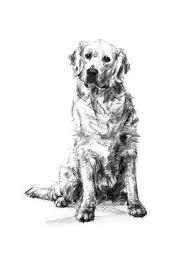 25 trending charcoal sketch ideas on pinterest eye study