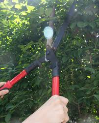 manual hedge trimmer the taming of the yard copper dot interiors