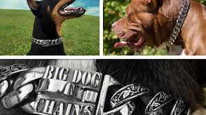 stainless steel collar necklace images Big dog chains 316l stainless steel dog jewelry collars by miguel 0&amp