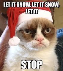 Grumpy Cat Snow Meme - grumpy cat christmas pics let it snow grumpy cat christmas