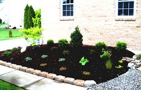front yard landscape with small tree ideas and green bush simple
