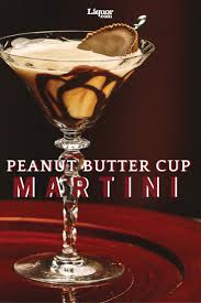 martini pickle best 25 martini mix ideas on pinterest mixed drink recipes