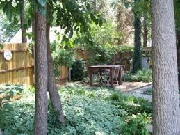 Backyard Song Living Laboratory For Kids Your Backyard