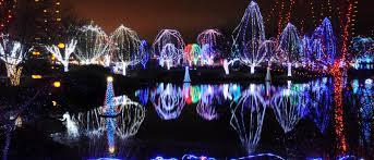 Zoo Lights Houston by Lights Before Christmas Toledo Zoo Christmas Lights Decoration