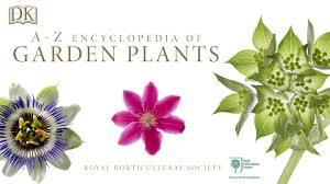 flower encyclopedia rhs a z encyclopedia of garden plants