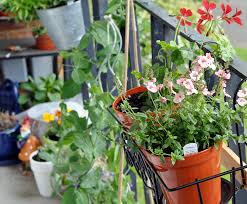 Small Apartment Balcony Garden Ideas Diy How To Plant A Personal Garden In A Small Space